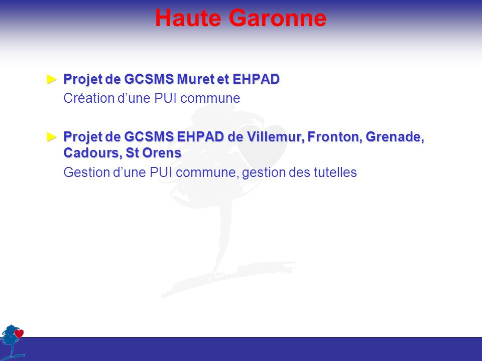 Haute Garonne Projet de GCSMS Muret et EHPAD