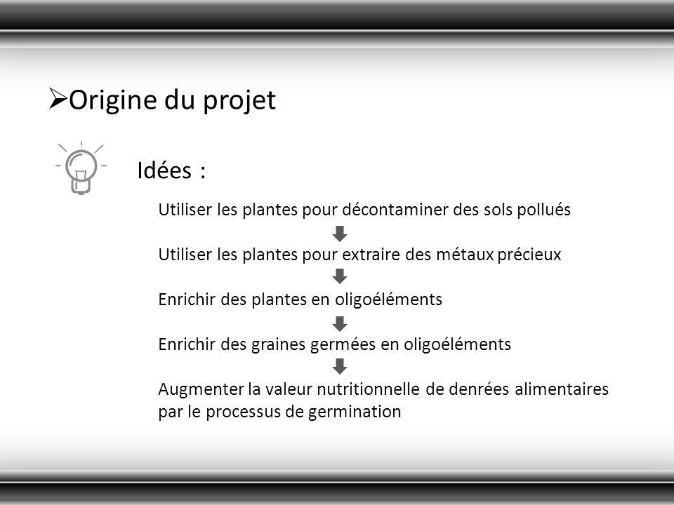 Origine du projet Idées :