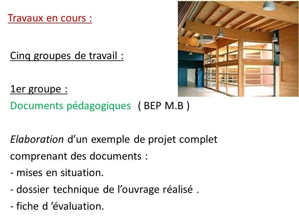 Travaux en cours : Cinq groupes de travail : 1er groupe : Documents pédagogiques ( BEP M.B ) Elaboration d'un exemple de projet complet.