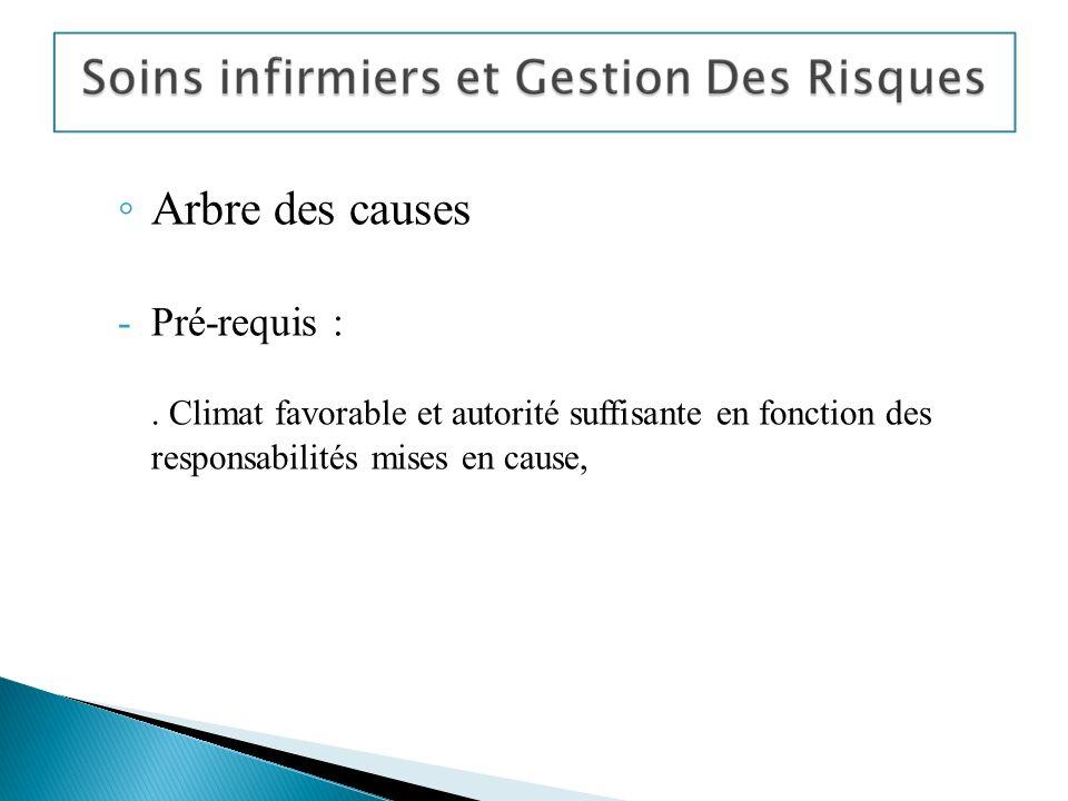 Arbre des causes Pré-requis :