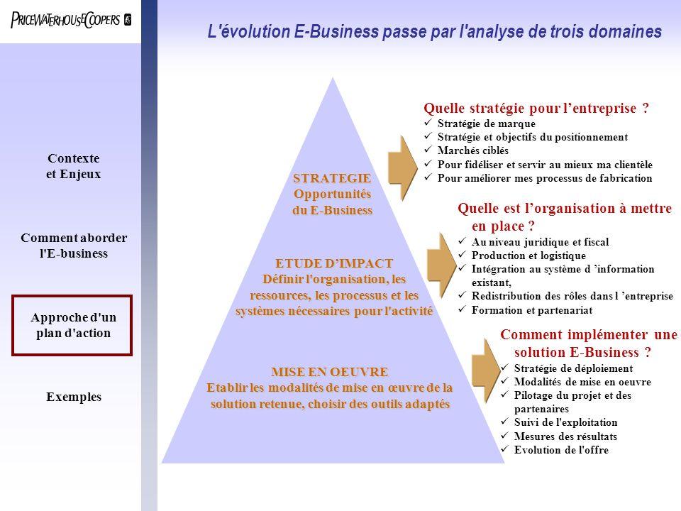 L évolution E-Business passe par l analyse de trois domaines