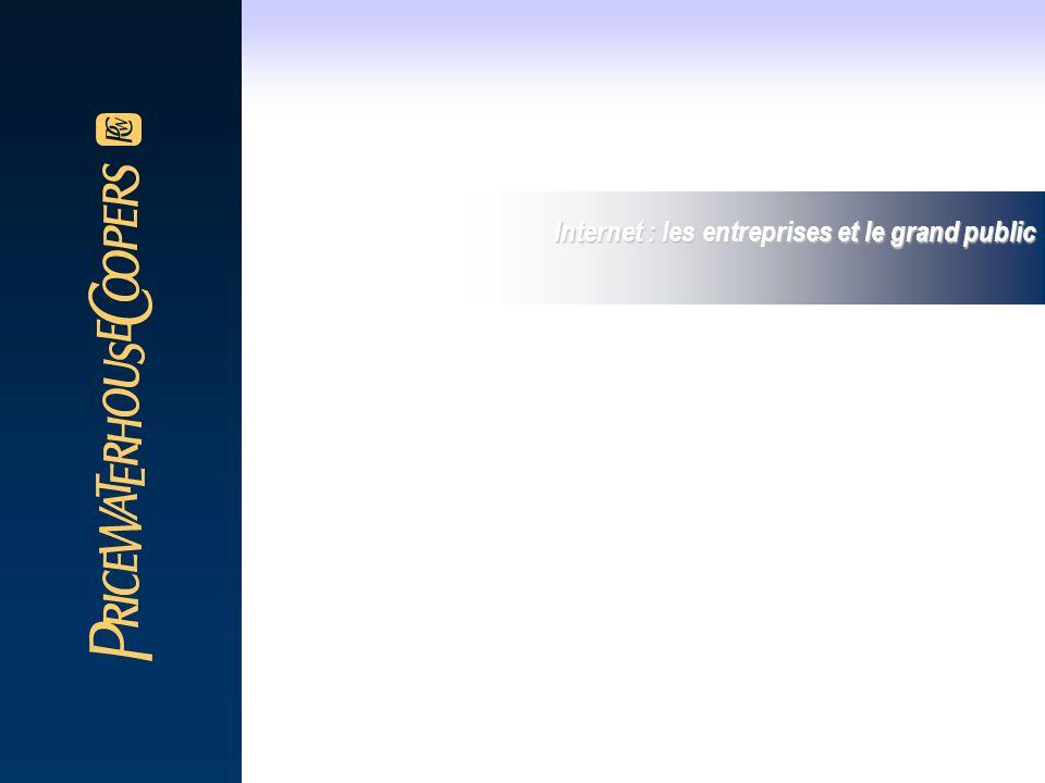 Internet : les entreprises et le grand public