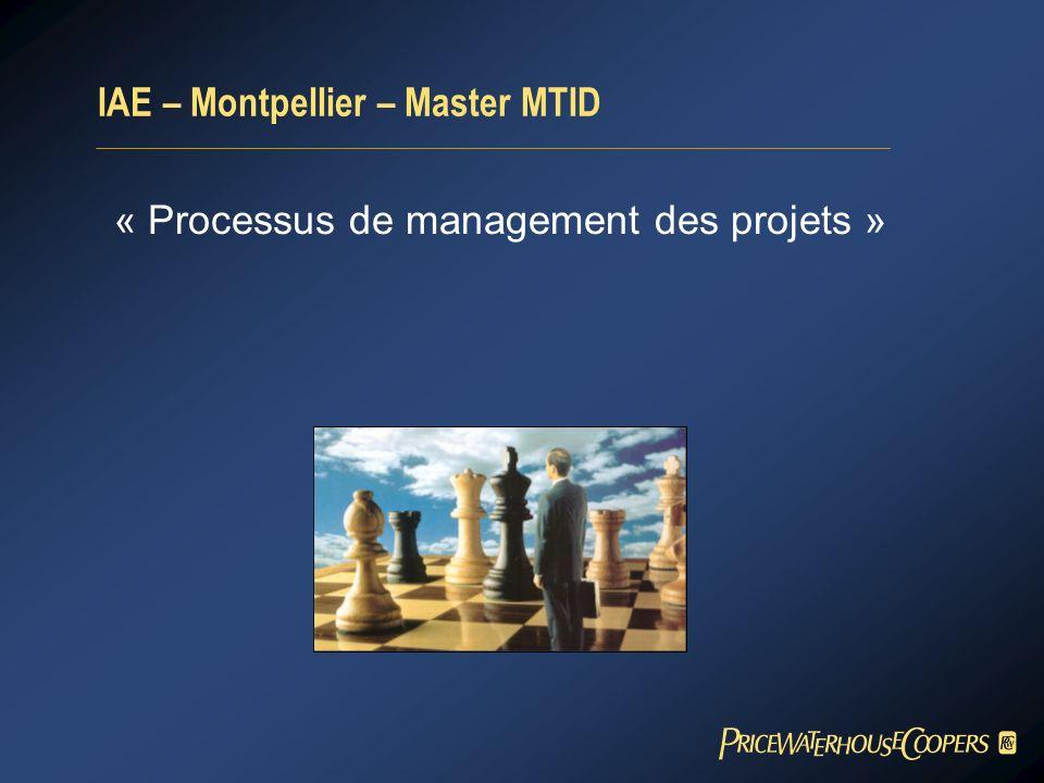IAE – Montpellier – Master MTID