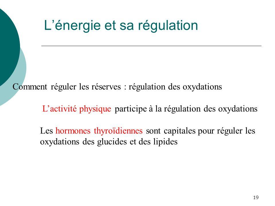 L'énergie et sa régulation