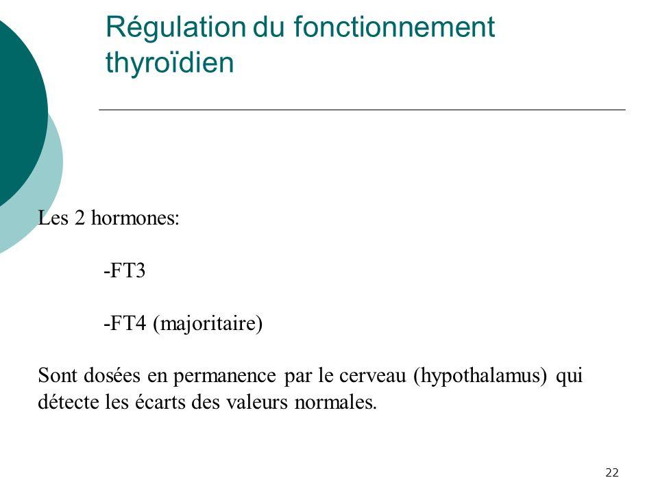 Régulation du fonctionnement thyroïdien