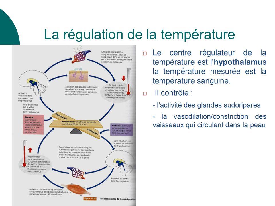 La régulation de la température