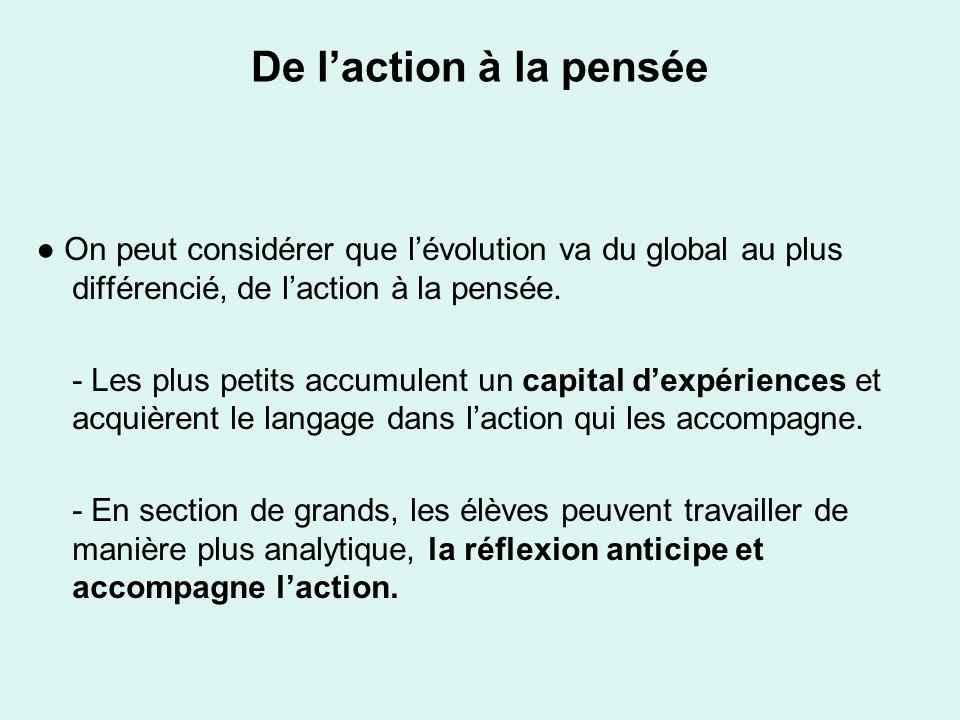De l'action à la pensée ● On peut considérer que l'évolution va du global au plus différencié, de l'action à la pensée.