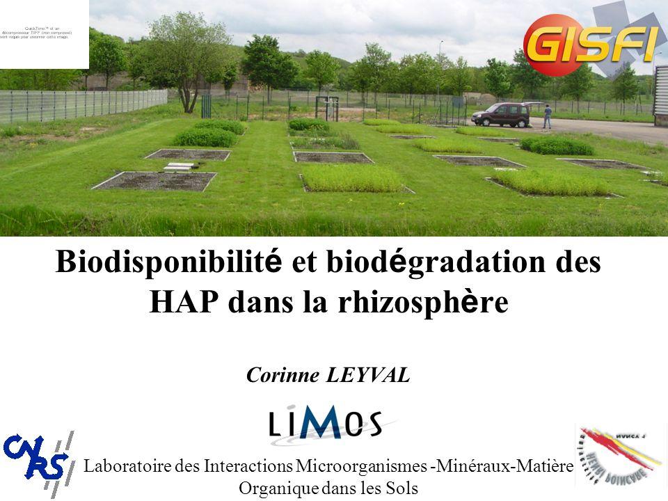 Biodisponibilité et biodégradation des HAP dans la rhizosphère Corinne LEYVAL Laboratoire des Interactions Microorganismes -Minéraux-Matière Organique dans les Sols
