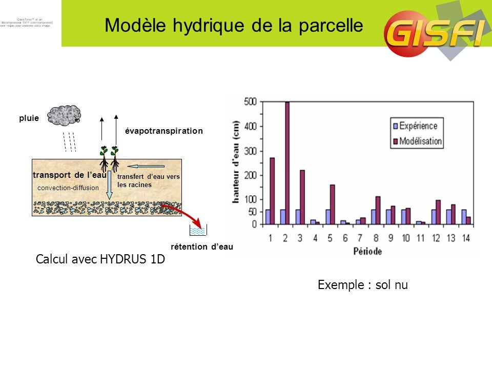 Modèle hydrique de la parcelle