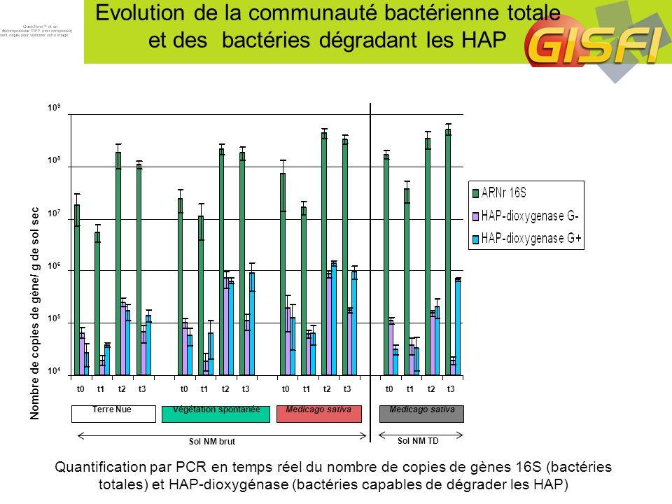 Evolution de la communauté bactérienne totale et des bactéries dégradant les HAP