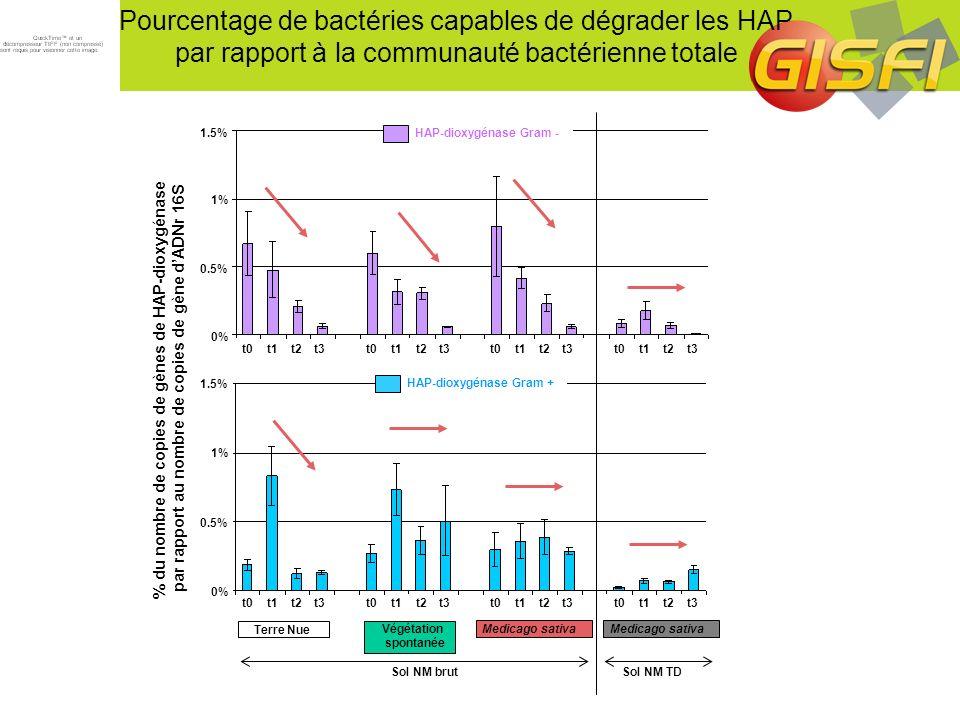 Pourcentage de bactéries capables de dégrader les HAP par rapport à la communauté bactérienne totale