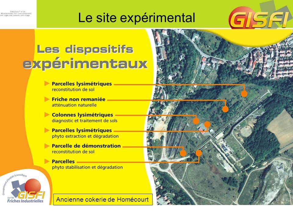 Le site expérimental Ancienne cokerie de Homécourt