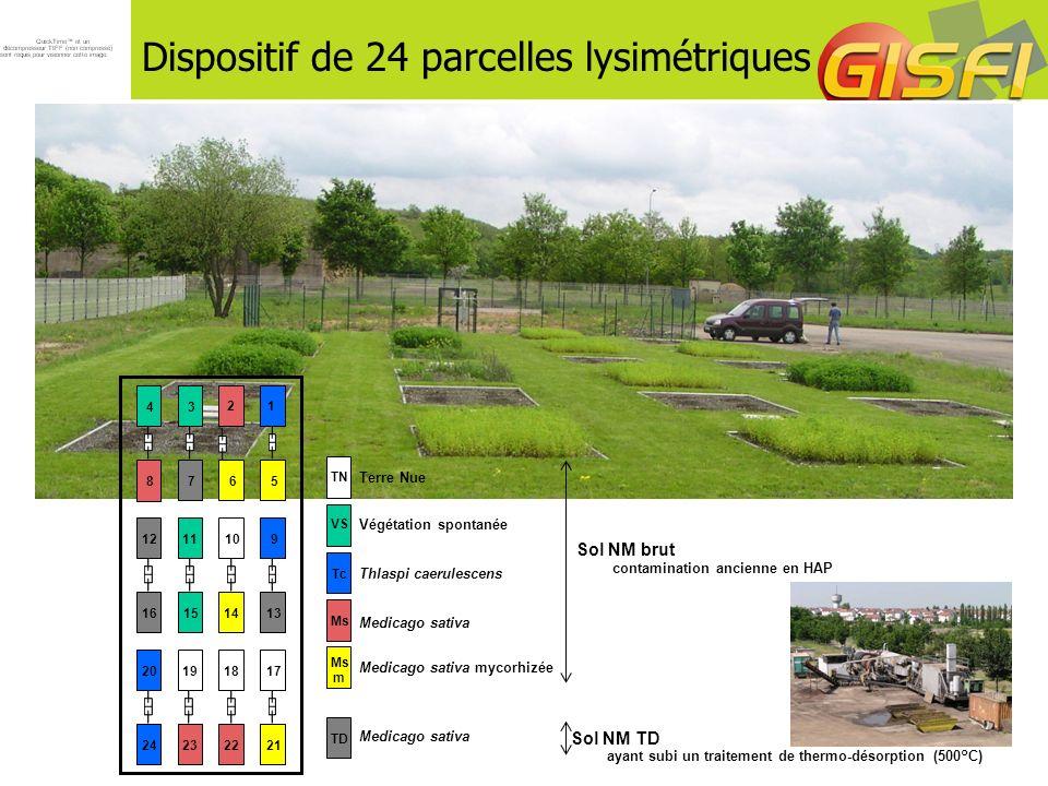 Dispositif de 24 parcelles lysimétriques