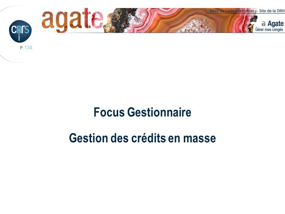 Focus Gestionnaire Gestion des crédits en masse