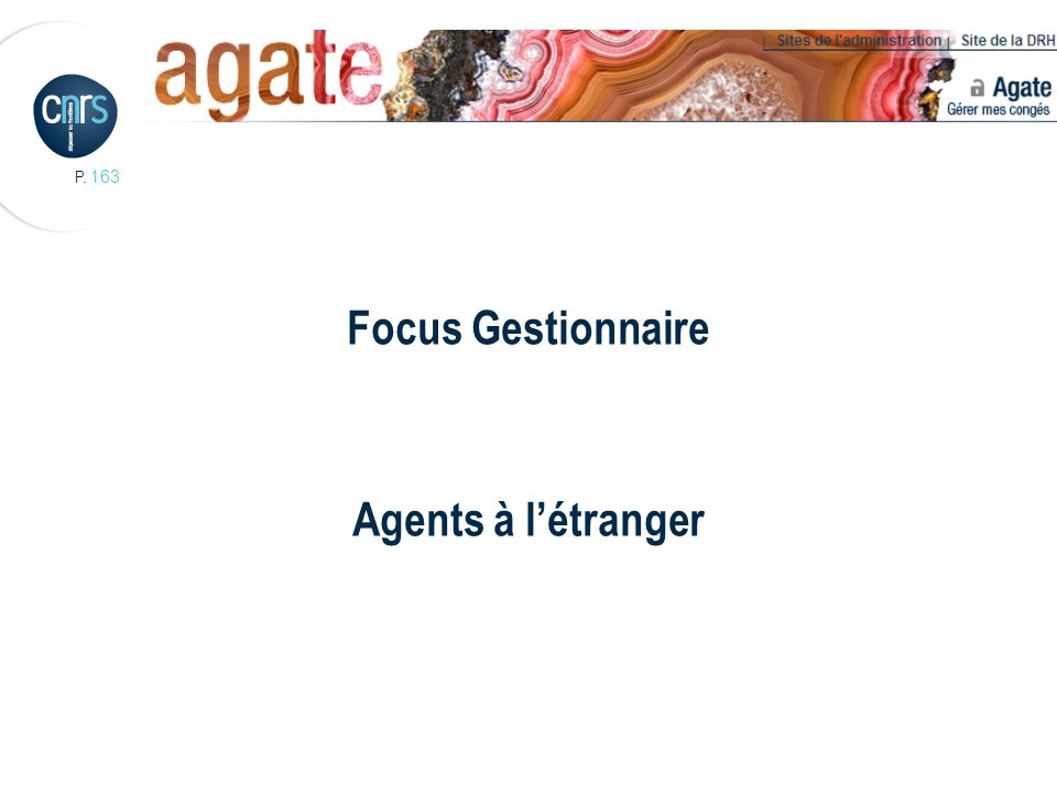 Focus Gestionnaire Agents à l'étranger