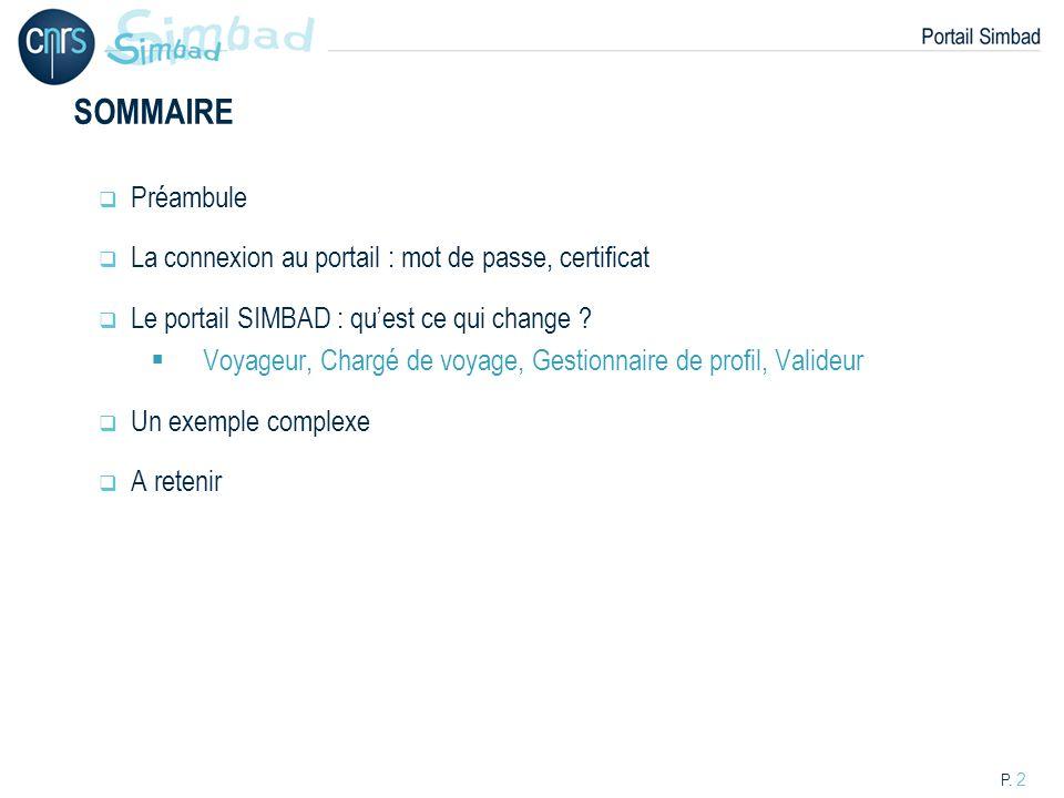 SOMMAIRE Préambule La connexion au portail : mot de passe, certificat