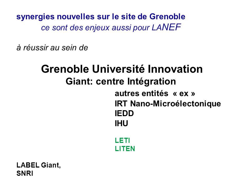 autres entités « ex » synergies nouvelles sur le site de Grenoble