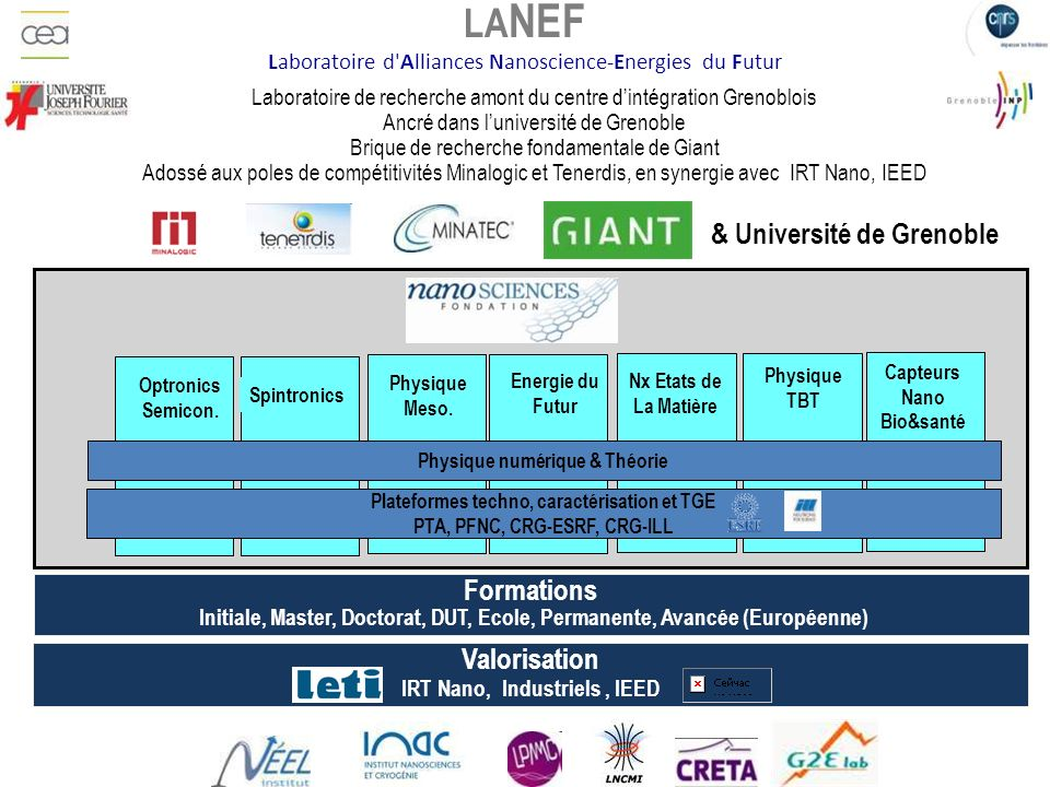 LANEF Laboratoire d Alliances Nanoscience-Energies du Futur
