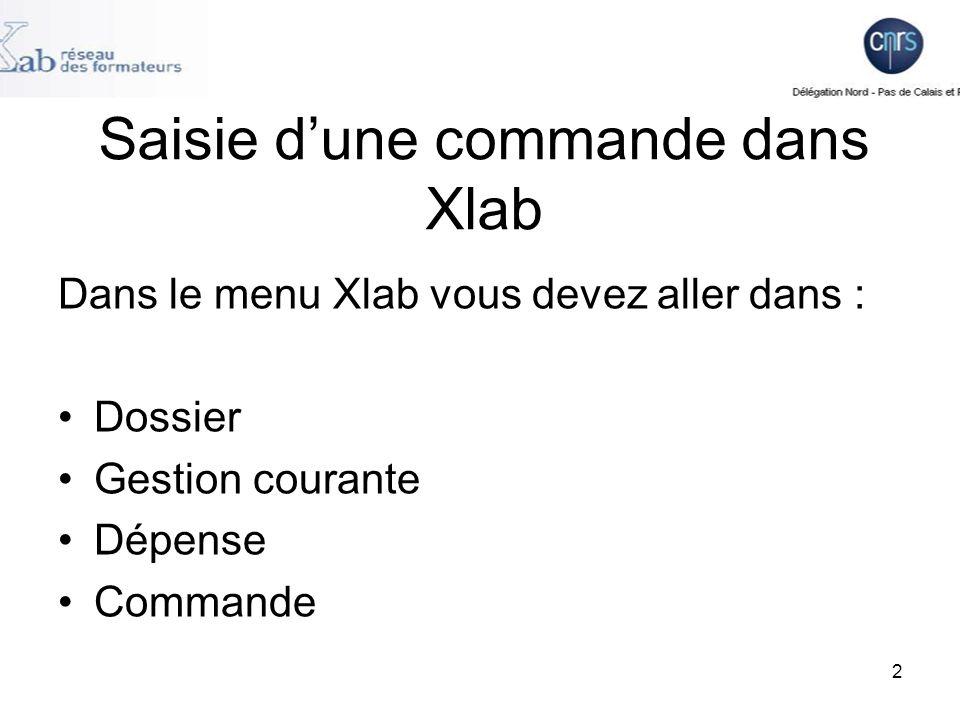 Saisie d'une commande dans Xlab