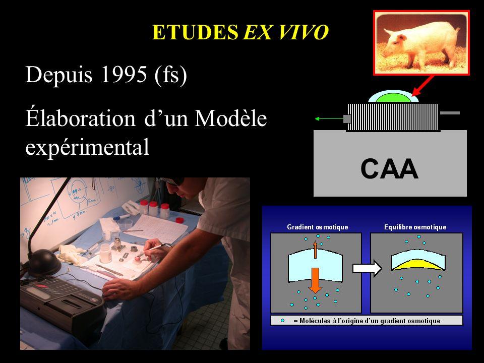 CAA Depuis 1995 (fs) Élaboration d'un Modèle expérimental