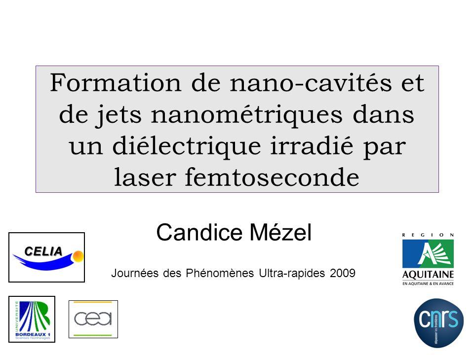 Formation de nano-cavités et de jets nanométriques dans un diélectrique irradié par laser femtoseconde
