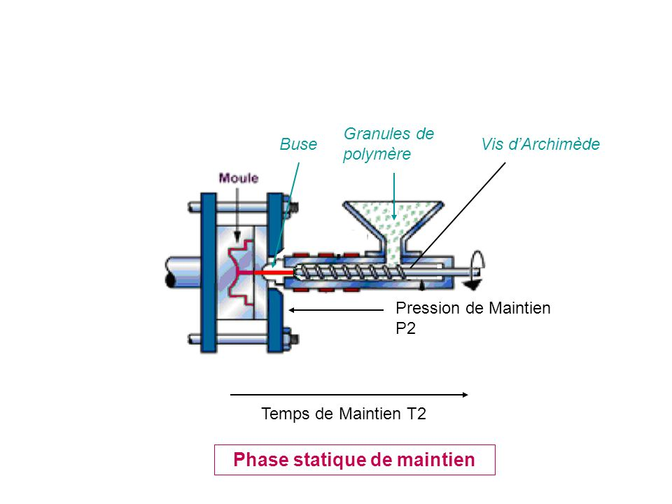Phase statique de maintien