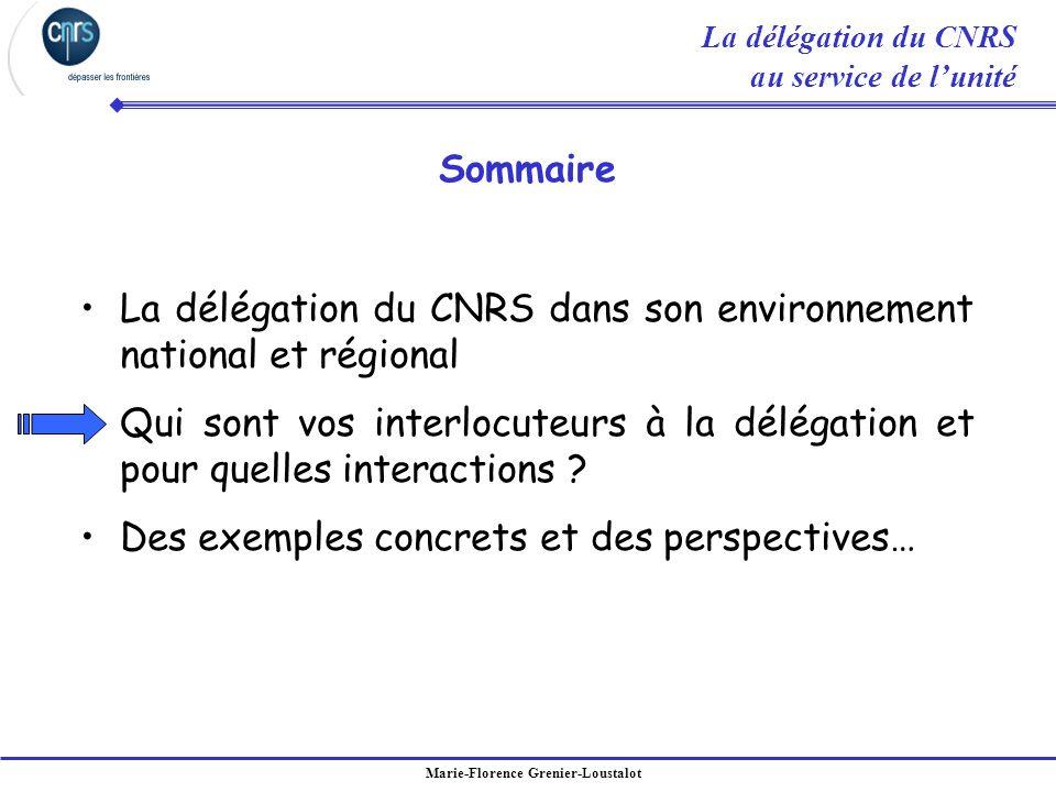 La délégation du CNRS dans son environnement national et régional