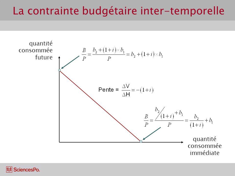 La contrainte budgétaire inter-temporelle