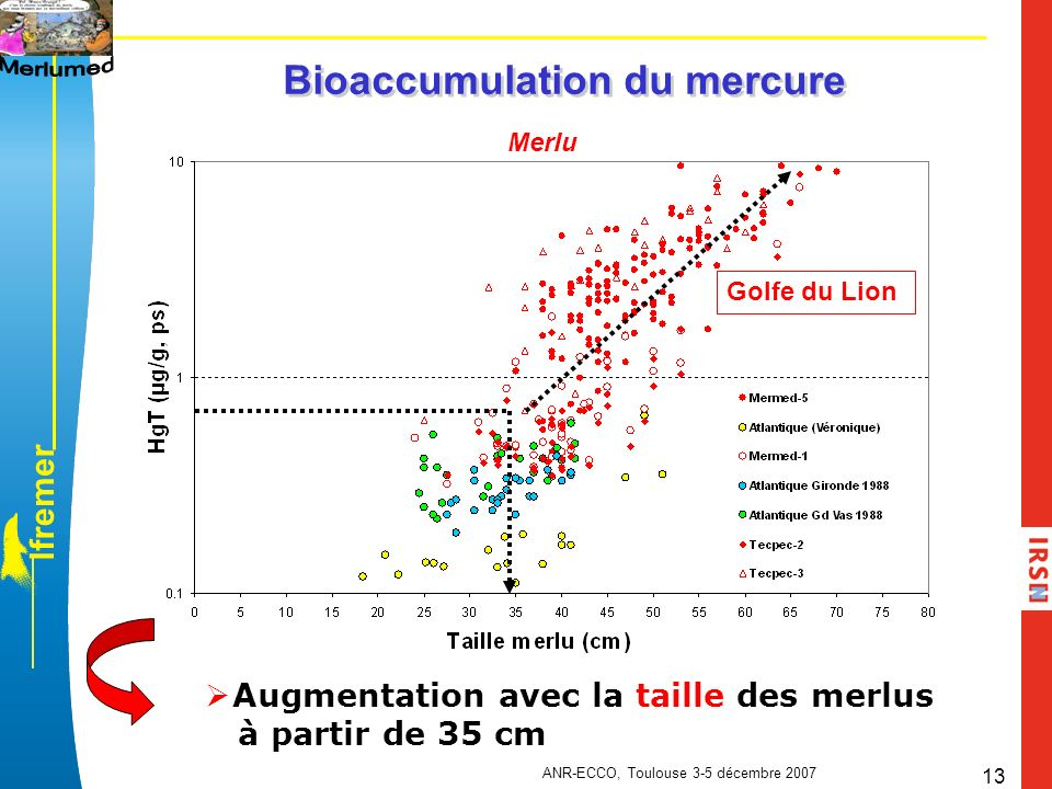 Bioaccumulation du mercure