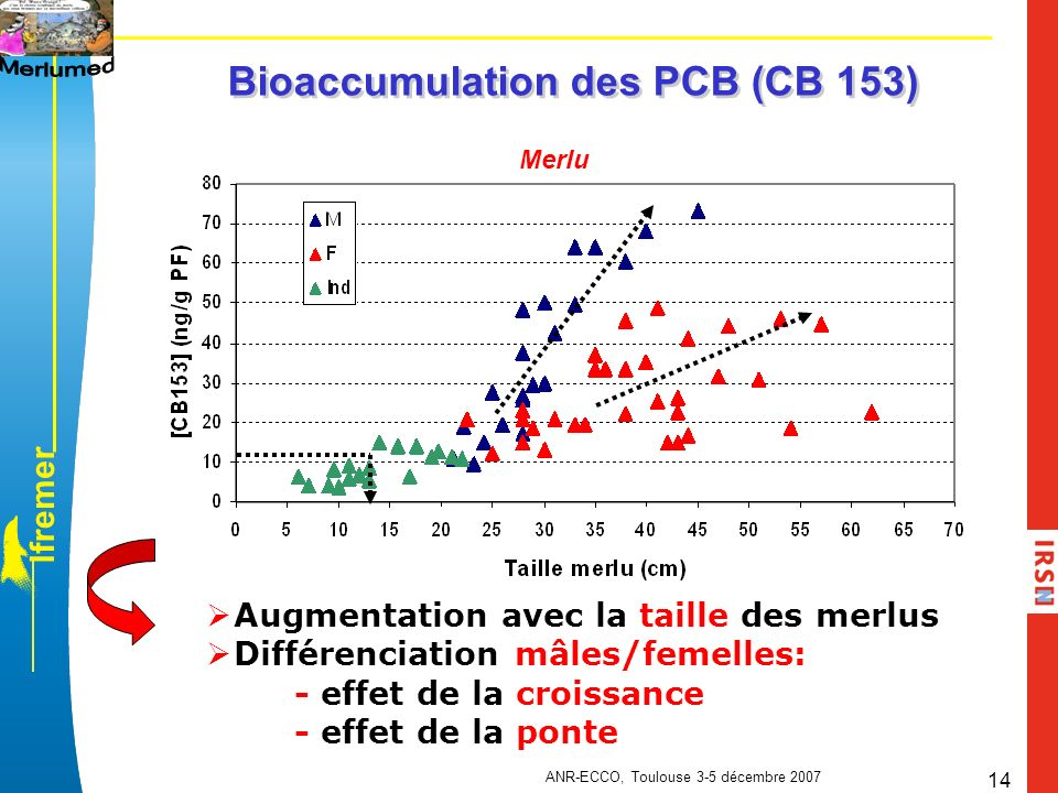 Bioaccumulation des PCB (CB 153)