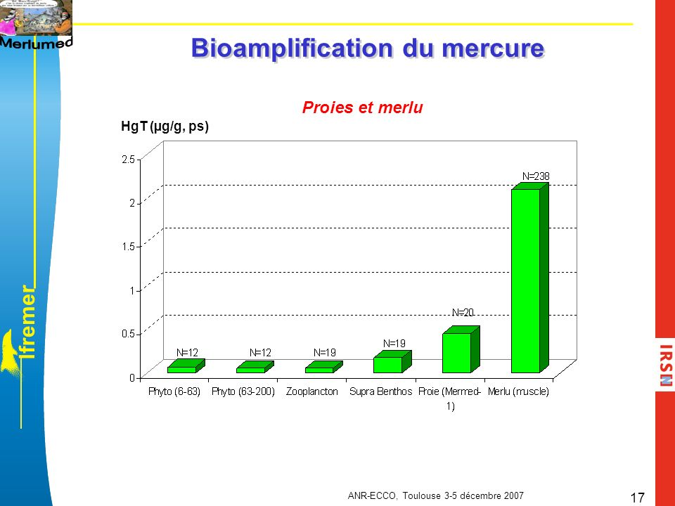 Bioamplification du mercure