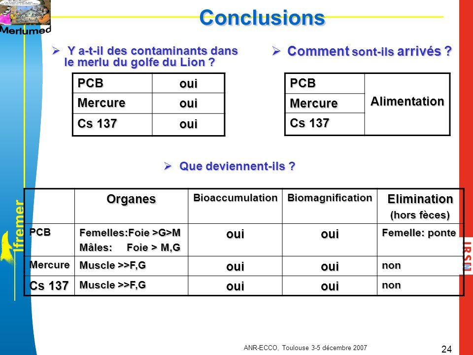 ANR-ECCO, Toulouse 3-5 décembre 2007