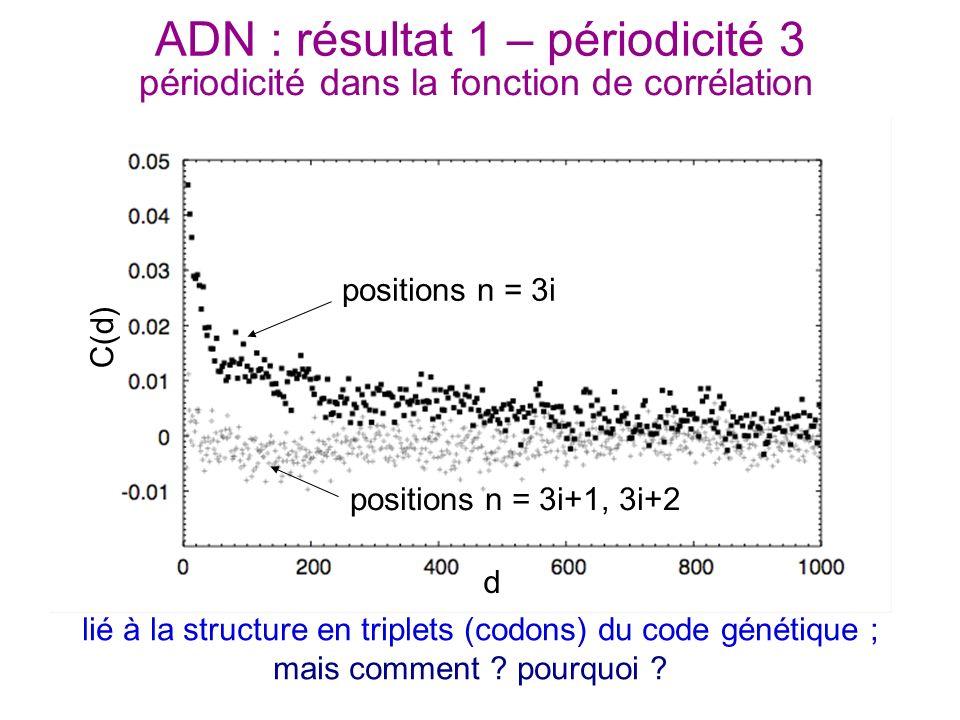 ADN : résultat 1 – périodicité 3