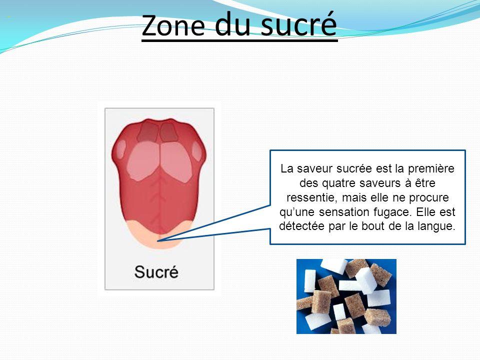 Zone du sucré.