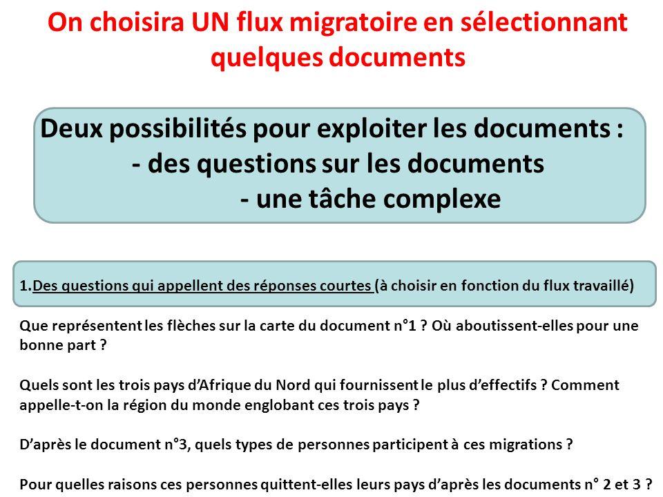 On choisira UN flux migratoire en sélectionnant quelques documents
