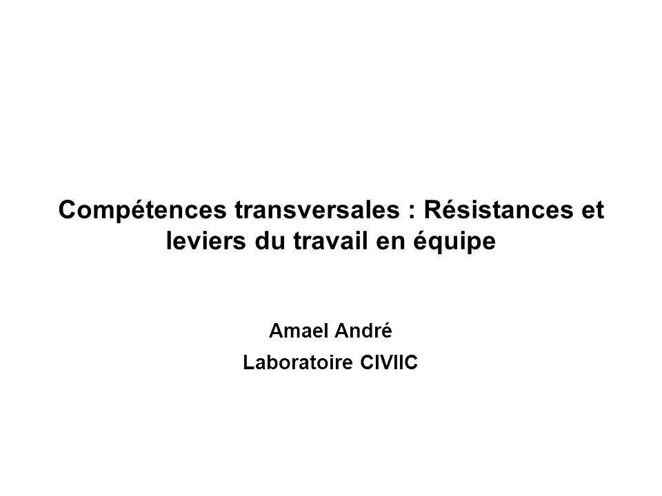 Compétences transversales : Résistances et leviers du travail en équipe