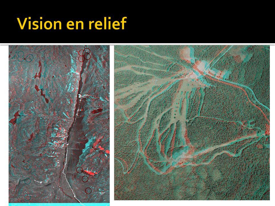 Vision en relief