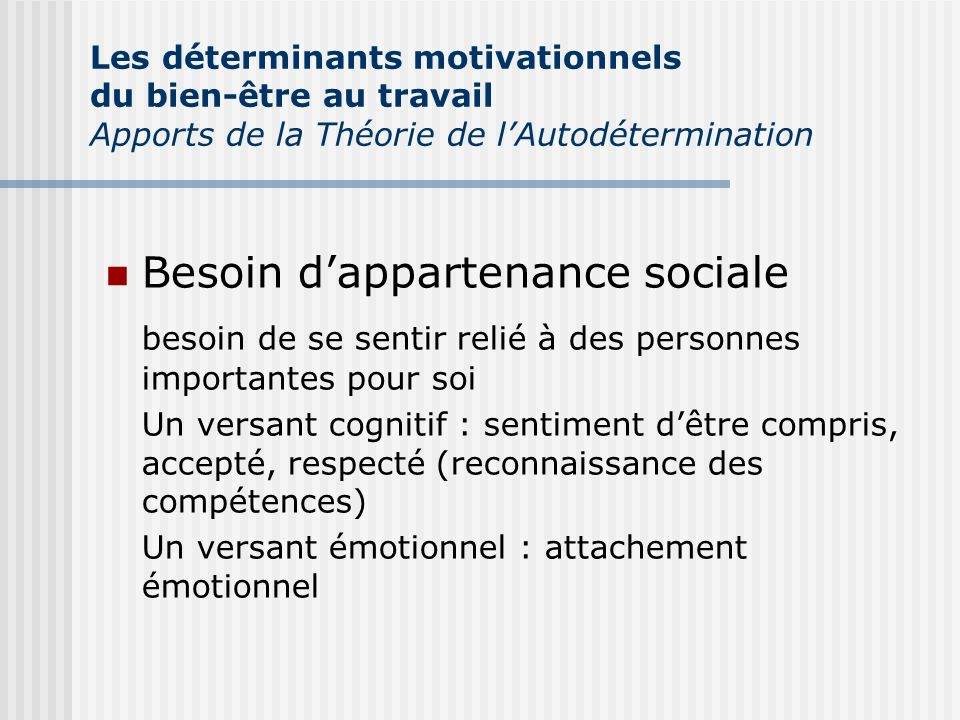 Besoin d'appartenance sociale