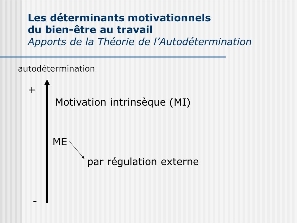 Motivation intrinsèque (MI)