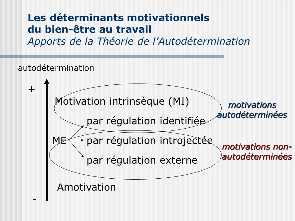 motivations autodéterminées