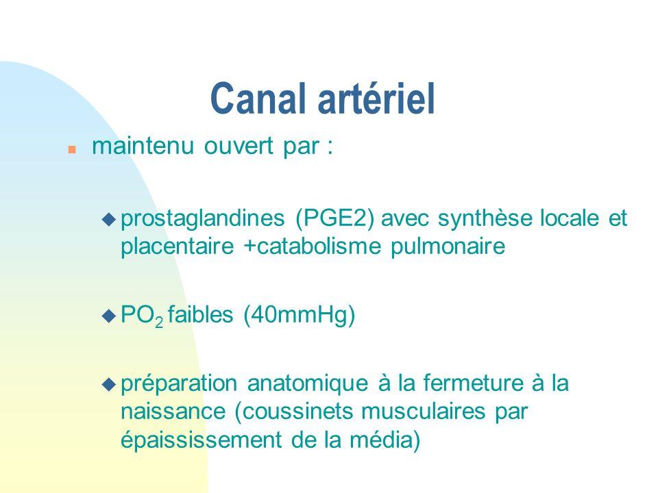 Canal artériel maintenu ouvert par :