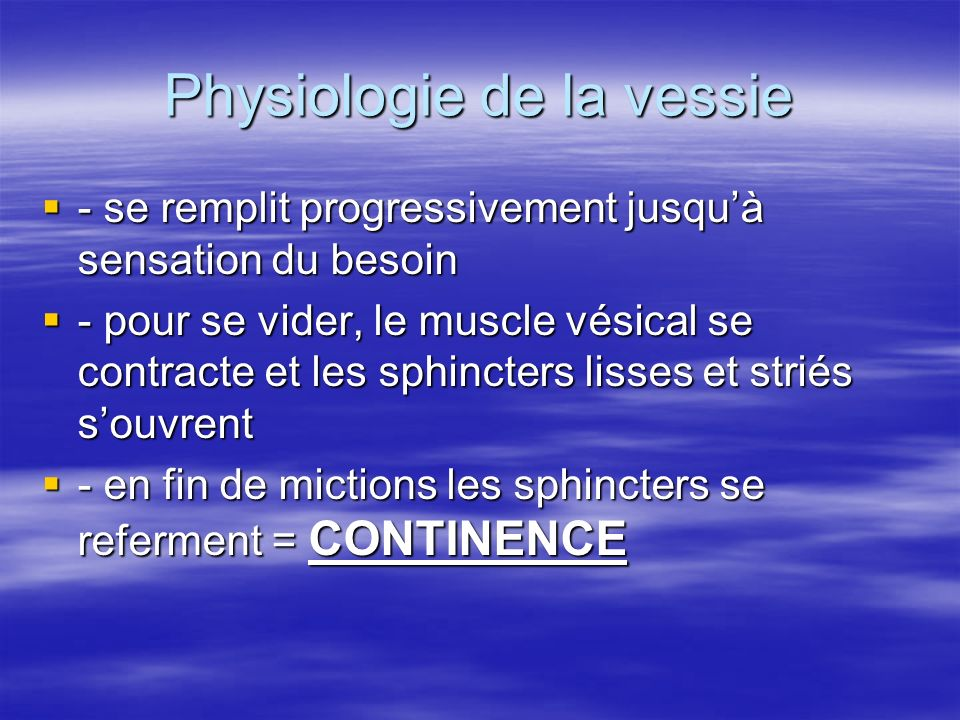 Physiologie de la vessie