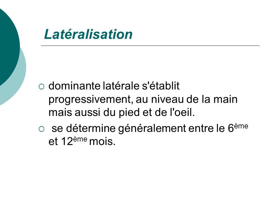 Latéralisationdominante latérale s établit progressivement, au niveau de la main mais aussi du pied et de l oeil.