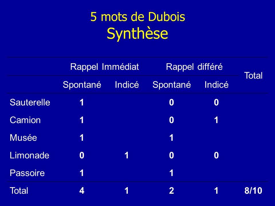 5 mots de Dubois Synthèse