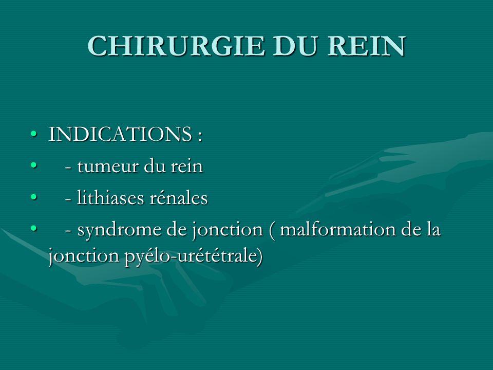 CHIRURGIE DU REIN INDICATIONS : - tumeur du rein - lithiases rénales