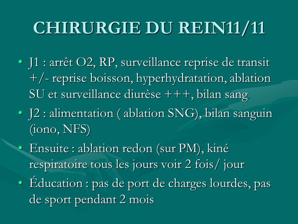 CHIRURGIE DU REIN11/11