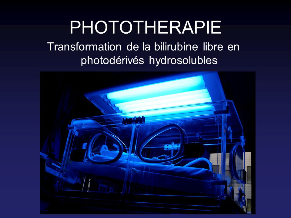Transformation de la bilirubine libre en photodérivés hydrosolubles