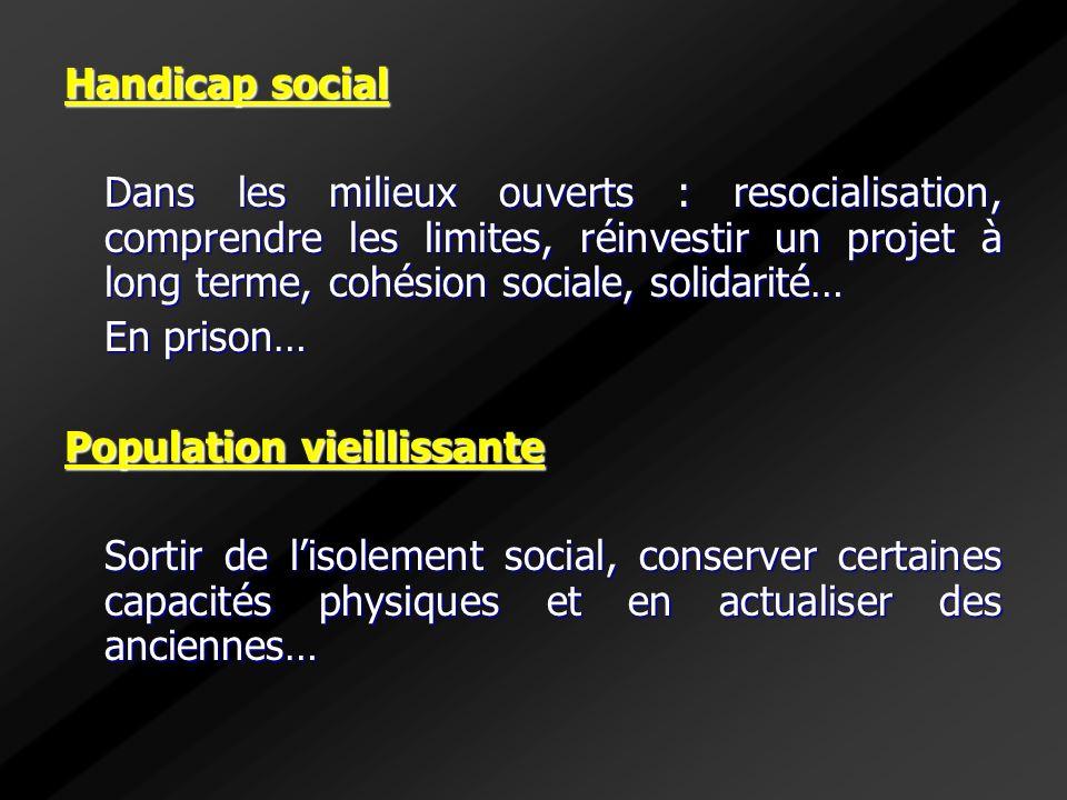Handicap social Dans les milieux ouverts : resocialisation, comprendre les limites, réinvestir un projet à long terme, cohésion sociale, solidarité…