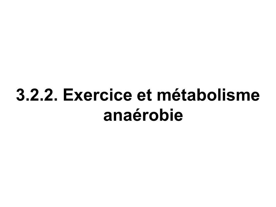 3.2.2. Exercice et métabolisme anaérobie