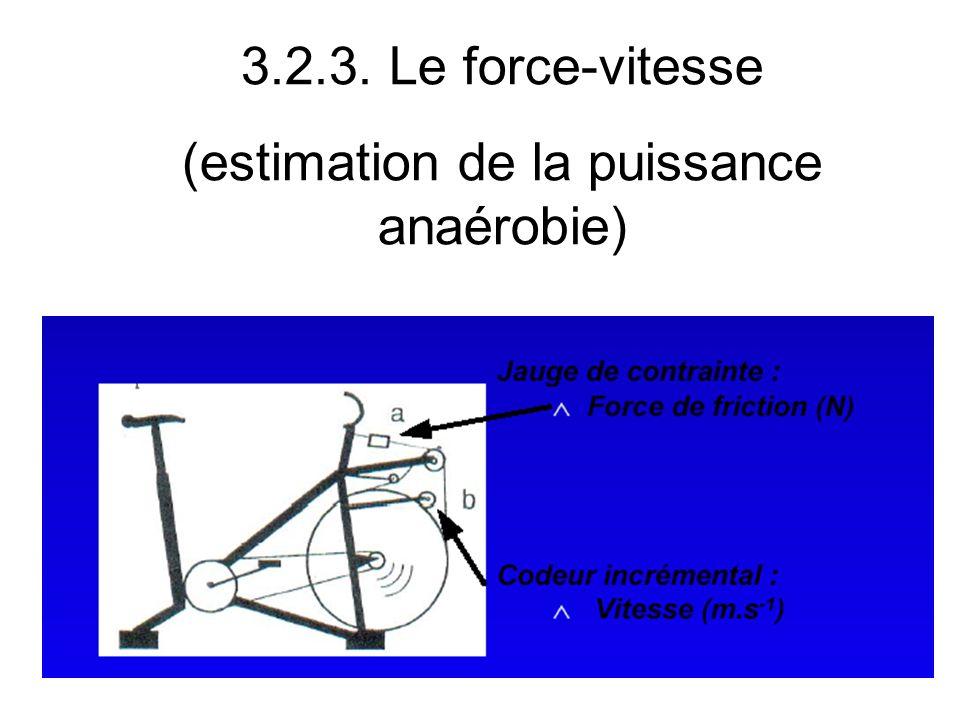 (estimation de la puissance anaérobie)